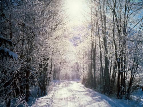 Зима просмотров 286 добавил hudoznik