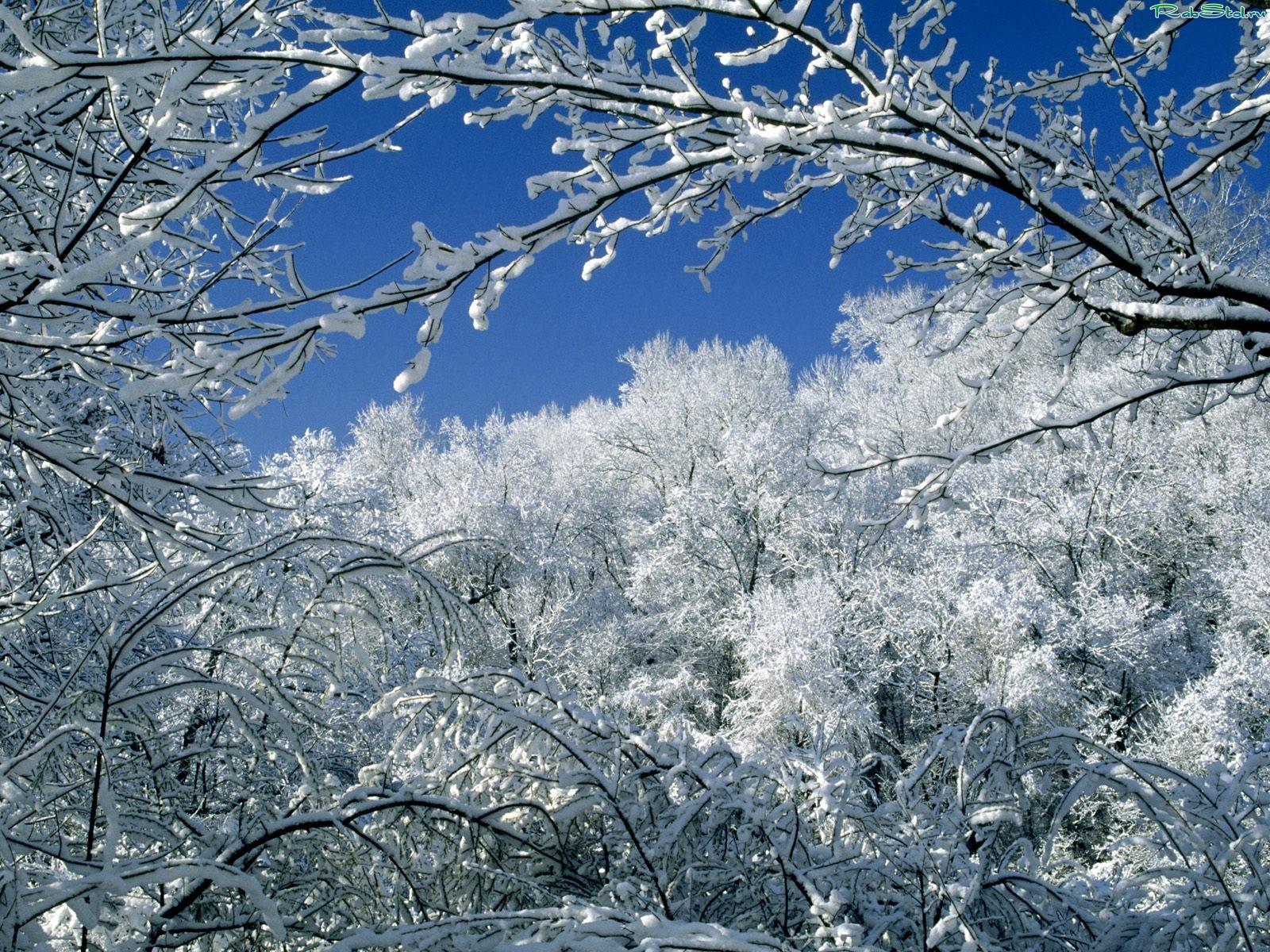 Категория зима добавил hudoznik 26 09 2009